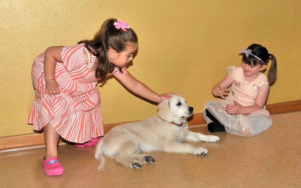 2 Mädchen streicheln vorsichtig einen Therapiehund, der entspannt auf dem Boden liegt